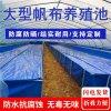 大型帆布养殖水池 水产养殖帆布水池
