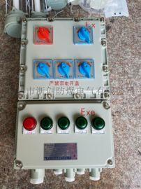 4回路带总开关防爆动力照明检修箱