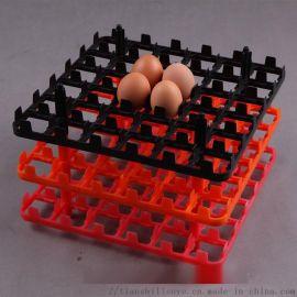 天仕利生產塑料雞蛋託 雞蛋運輸蛋託 雞蛋託盤