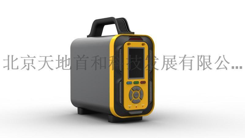 耐高温型手提式溴甲烷分析仪