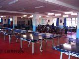 乒乓球室地板 乒乓球館地膠 塑膠運動地板