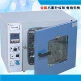 特價直銷 電熱乾燥箱 鼓風乾燥箱