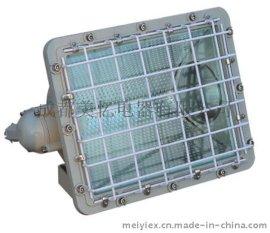 BAT52-L400系列防爆泛光灯