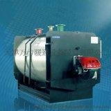 大型卧式燃油燃气热水锅炉卧式锅炉