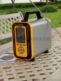 厂家直销青岛路博LB-MT6X泵吸手提式  一气体分析仪
