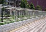 金屬護欄、安平圍牆護欄、圍牆護欄廠家