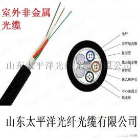 太平洋光纜 GYFTY-4B1 室外非金属光纜