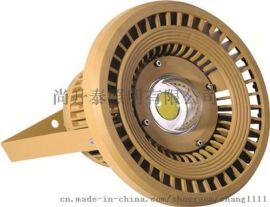 供应SW110防爆LED投光灯大功率投光灯