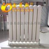家用鋼二柱暖氣片價格