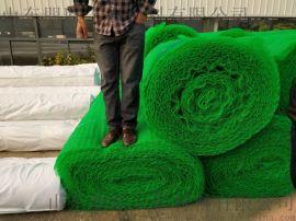 护坡用三维植被网/植被网厂家/高速公路护坡植被网