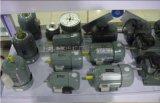 上海德东电机厂长沙办事供应Jw7124三相异步