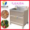 鼓泡翻滚式蔬菜清洗机 洗果机 气泡式苦瓜清洗机 果蔬加工设备