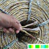 黃金繩捆綁廢品打包繩大棚壓膜專用黃金繩捆扎繩塑料繩包裝繩單股