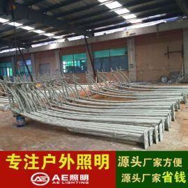 AE照明AE-LDG-01  路灯杆热 镀锌路灯杆 定制 6米led异形灯杆 双臂太阳能热镀锌灯杆生产厂家