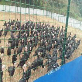 批发养鸡场围栏网  浸塑铁丝网  荷兰网  养殖栅栏网  圈地铁丝网