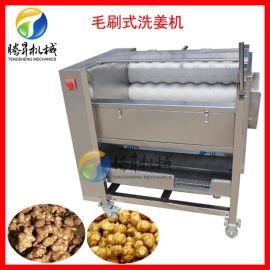 小型自动洗姜机 薯类清洗去皮机 土豆生姜清洗去泥机