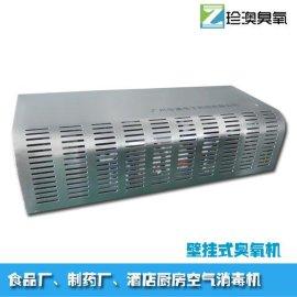 空气消毒净化器 空调式臭氧杀菌消毒设备 食品车间杀菌机BG5G