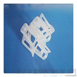 置顺陶瓷有限公司供应塑料海尔环 皇冠型拉西环 聚丙烯海尔环 塑料塔填料 散堆填料
