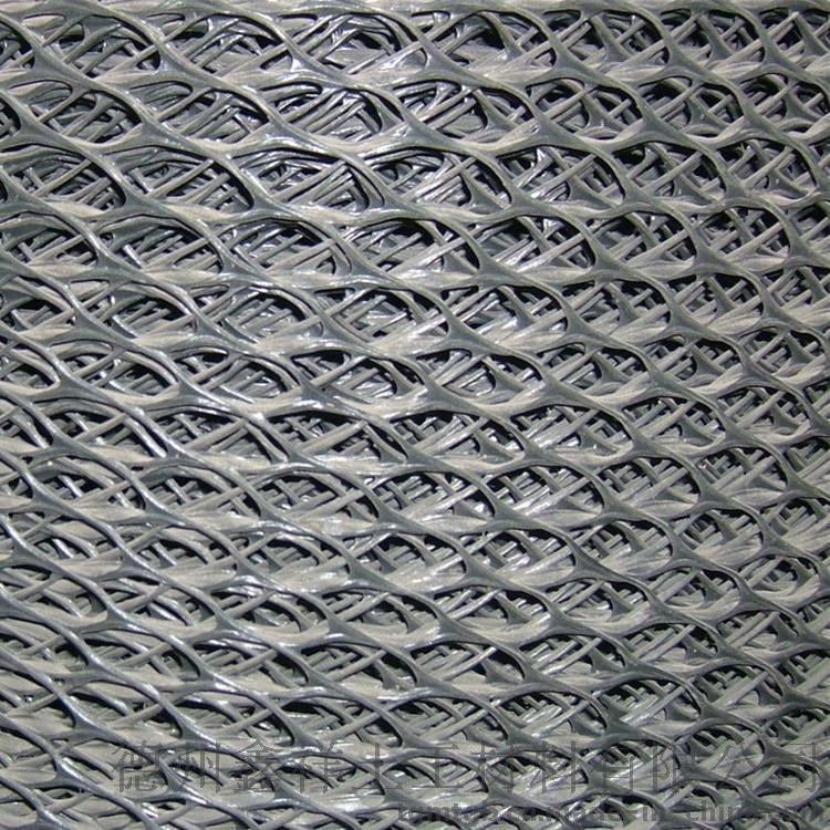 厂家批发 **三维复合排水网 pe排水土工网 量大从优