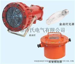 DGC-175/127矿用隔爆型投光灯