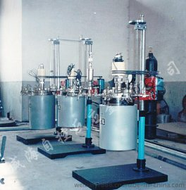 5L 釜盖升降WHFS系列 实验反应釜 高温高压