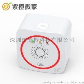 赣州壁挂式一氧化碳煤气报警器_无线CO泄露检测仪 wifi