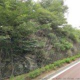 鍍鋅噴漿掛網@邊坡綠化防護網@山體綠化防護網