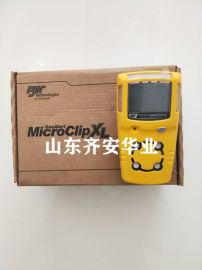 上海BW MCXL-XWHM复合式气体检测报警仪