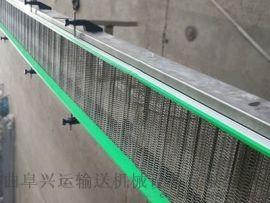 网带清洗输送机专业生产 水平直线输送