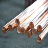 廠家專業生產純銅棒 接地紫銅棒 工程專用銅棒可加工