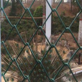 養雞養鴨鐵絲網 包綠膠皮圍網 養殖圍欄網