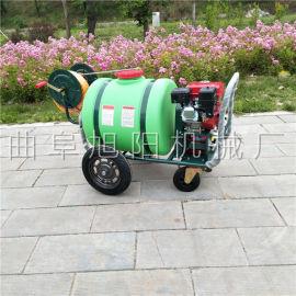 公共场地灭蝇手推车式打药机大棚种植园汽油动力喷雾器