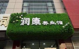背景植物墙人造草坪公司装饰门头招牌耐用