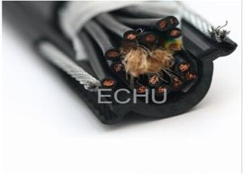 起重机电缆 RVV2G电动葫芦线 天车电缆 吊车电缆 起重 多芯线 圆线
