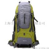 大容量行李双肩背包旅行包旅游登山包户外防水厂家定做