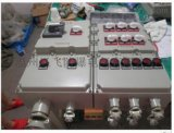 双电源自动切换防爆动力配电箱