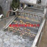 蔬菜气泡清洗机 叶类清洗机 连续式清洗加工成套设备