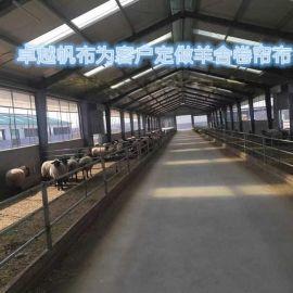 供应大型养殖猪场防水篷布,猪场卷帘布,猪棚窗帘布