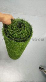绿色仿真草坪草坪丨产品质量一级丨优秀的生产厂家