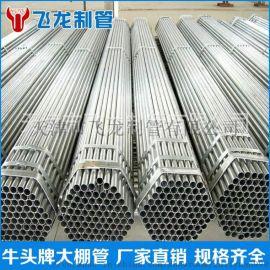 天津镀锌管厂家
