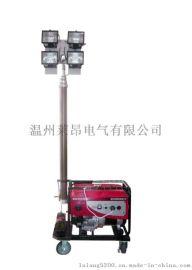 SFW6110_SFW6110C自动泛光工作灯