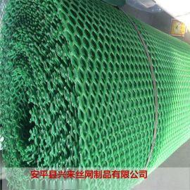生物塑料网 塑料网片规格 包邮育雏网养鸡网