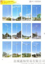 LED道路燈 鑫優品道路燈