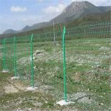 封山育林围栏网 江西铁丝网围栏 优质浸塑铁网围栏