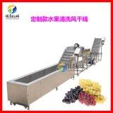 葡萄酒前处理机械 自动葡萄清洗风干流水线 表面无损伤洗果流水线