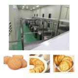 厂家直销多功能饼干生产线 抹茶三角饼干生产线 饼干成型设备