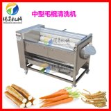 果蔬加工设备 大姜清洗机 花生果清洗机 喷淋式