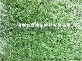 广东深圳 仿真人造草坪 幼儿园活运场