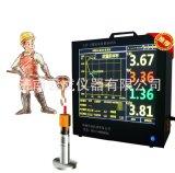 廠家直銷爐前鐵水質量分析儀(大屏顯示)
