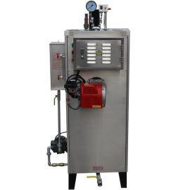 蒸汽锅炉厂制造80公斤锅炉自然循环炉休闲美容会所设备质量保